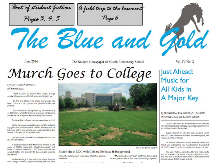 Blue and Gold Newspaper